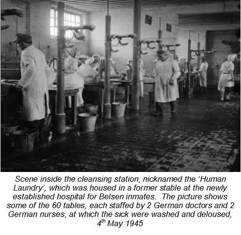Human Laundry-internal